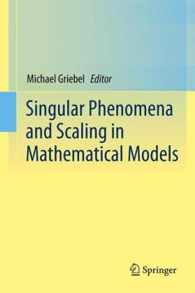 Buch: Singular Phenomena and Scaling in Mathematical Models