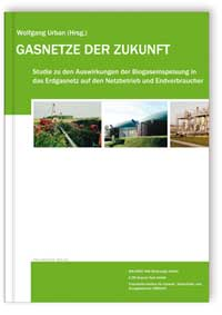 Buch: Gasnetze der Zukunft