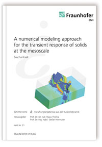 Buch: A numerical modeling approach for the transient response of solids at the mesoscale