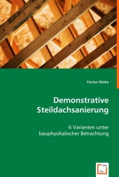 Demonstrative Steildachsanierung