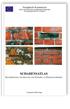 Schadensatlas. Klassifikation und Analyse von Schäden an Ziegelmauerwerk
