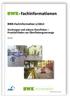 Starkregen und urbane Sturzfluten - Praxisleitfaden zur Überflutungsvorsorge. Ausgabe Juli 2013