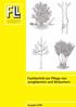 Fachbericht zur Pflege von Jungbäumen und Sträuchern. Ausgabe 2008
